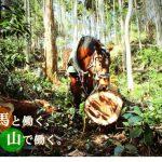 山と馬プロジェクトのリターン品が届いたよ